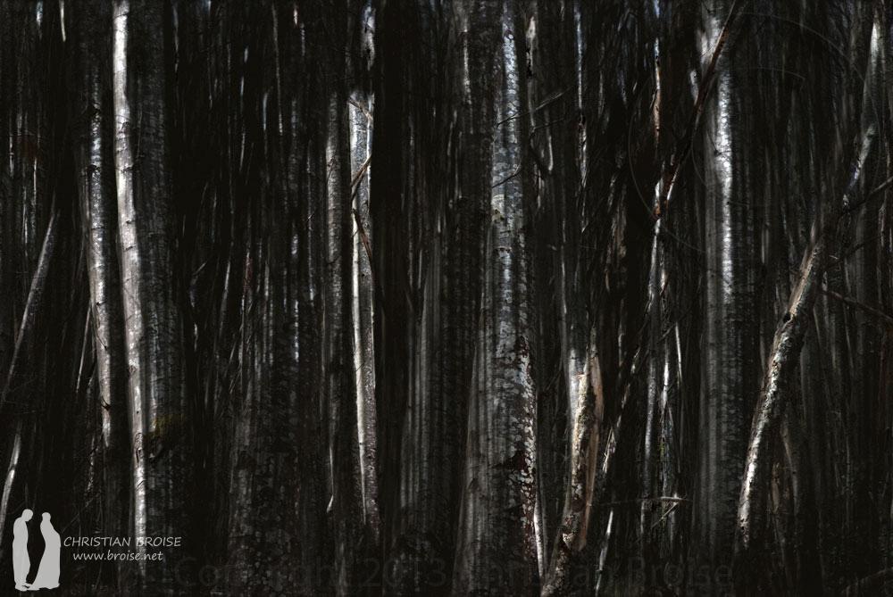 Dédale. Oeuvre originale: tirage Fine Art de l'artiste Christian Broise
