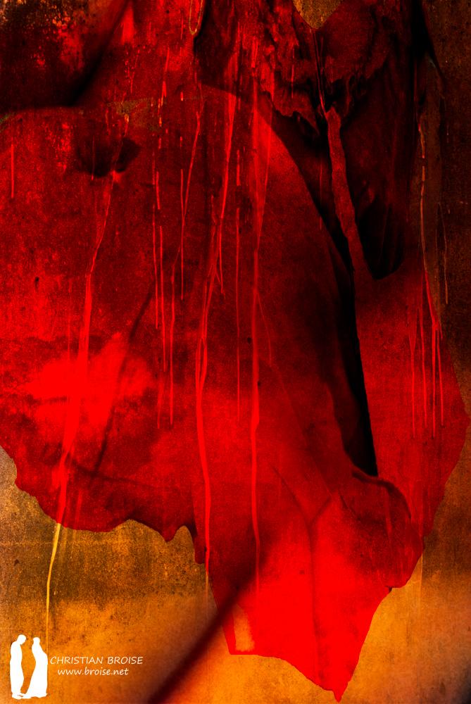 Salomé. Oeuvre originale: tirage Fine Art de l'artiste Christian Broise