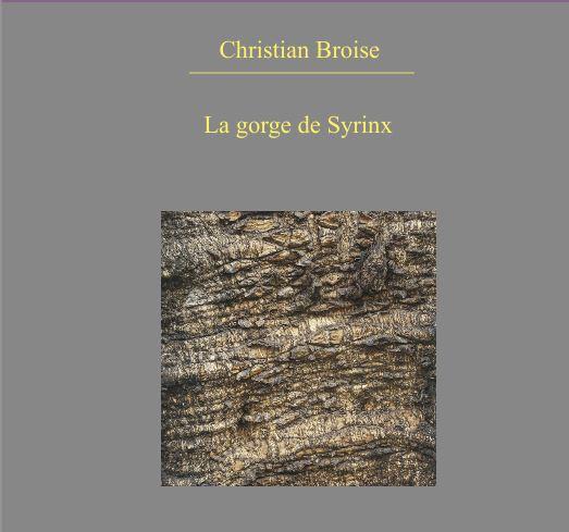 Première de couverture. La gorge de Syrinx de Christian Broise